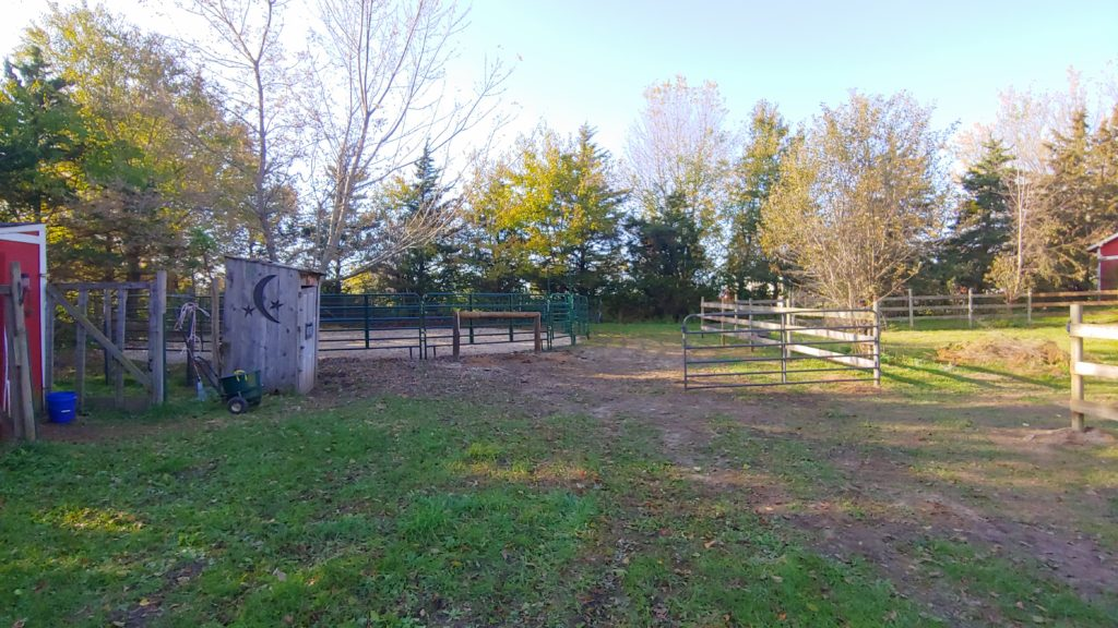Hitching Post by Round Pen